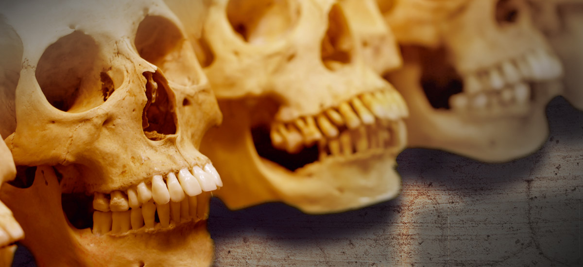 Forensic Anthropology, Forensic Anthropology in Germany, forensic anthropologie, forensische anthropologie, identification, Identifizierung